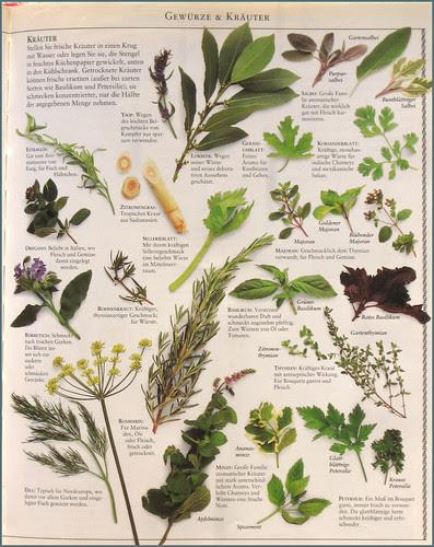 washoku ... herbs