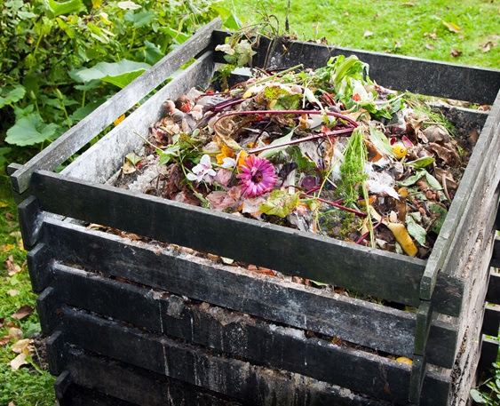 Aporte al medio ambiente practicando el compostaje | CJS Canecas