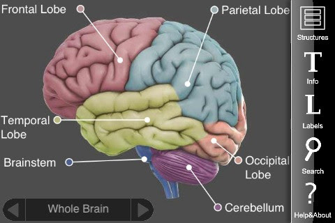 Top Psychology Apps in 2012 | CareersinPsychology.org