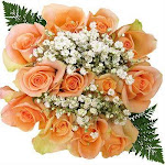 Peach Rose Bouquet 10 Dozen