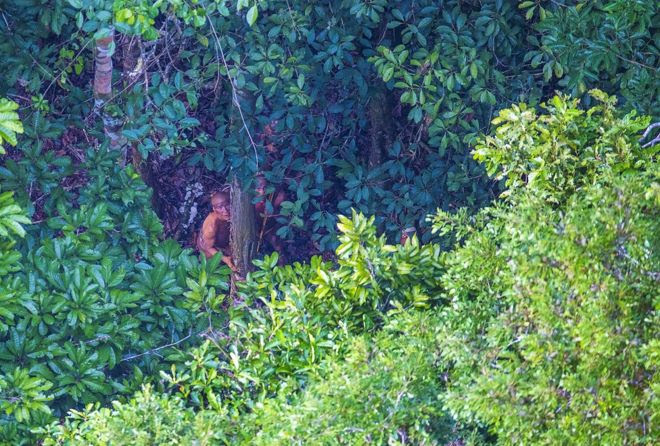 Índios observam aeronave escondidos atrás de árvore