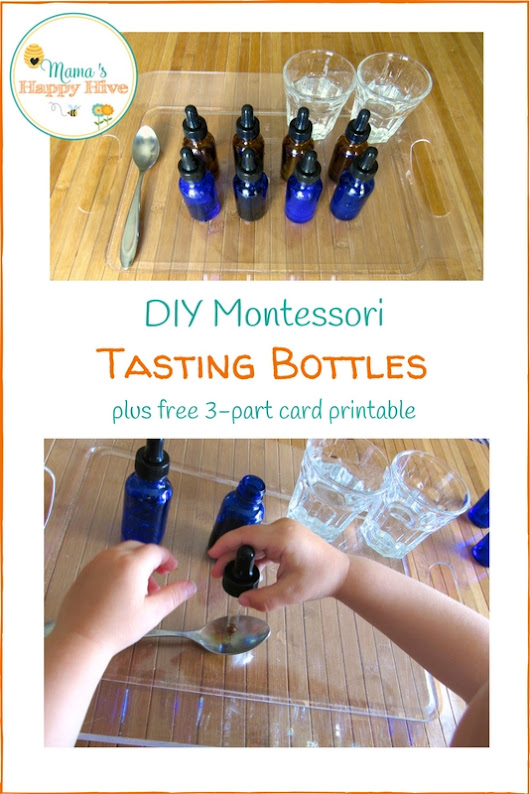 DIY Montessori Tasting Bottles and Free 3-Part Card Printables