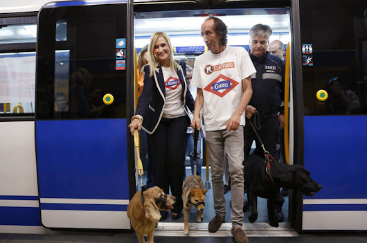 ! Spanish News Today - Madrid Allows Pet Dogs To Travel On The Metro