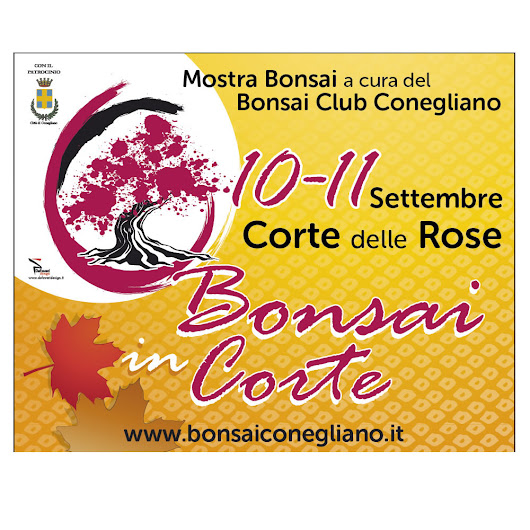 Bonsai in Corte delle Rose 2016 - Bonsai Club Conegliano