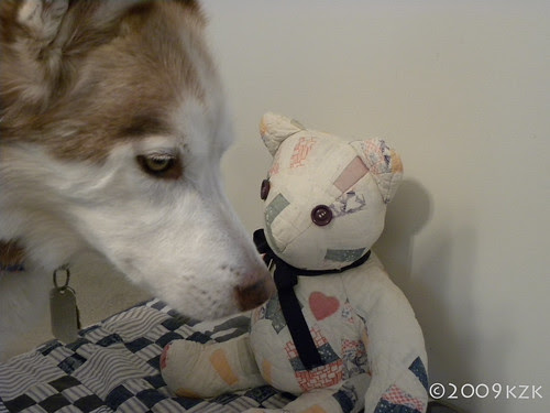 DSCN2266 Zim and Bear