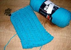 SpecOlymScarf