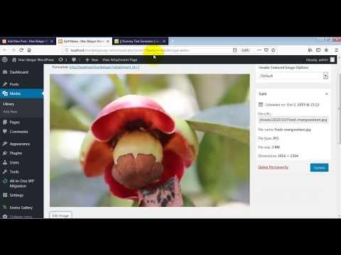 Cara Membuat Postingan di Website Berbasis WordPress