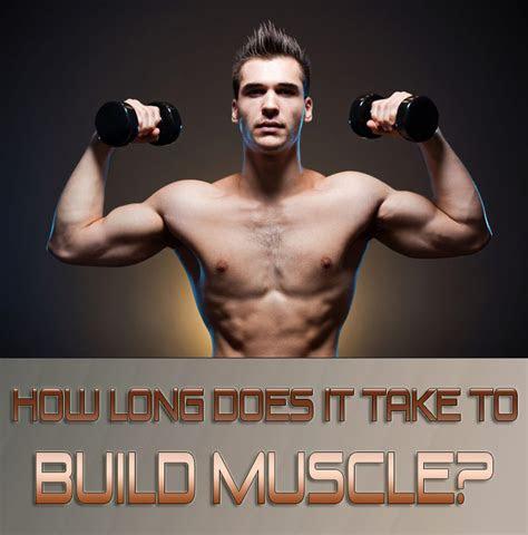 long     build muscle quiet corner