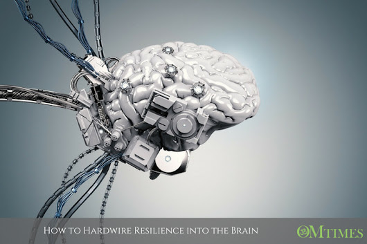 How to Hardwire Resilience into the Brain - OMTimes Magazine