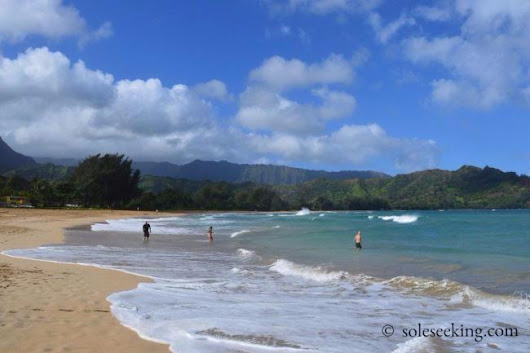 Conquering the Current: The Time I Thought I Might Die in Hawaii