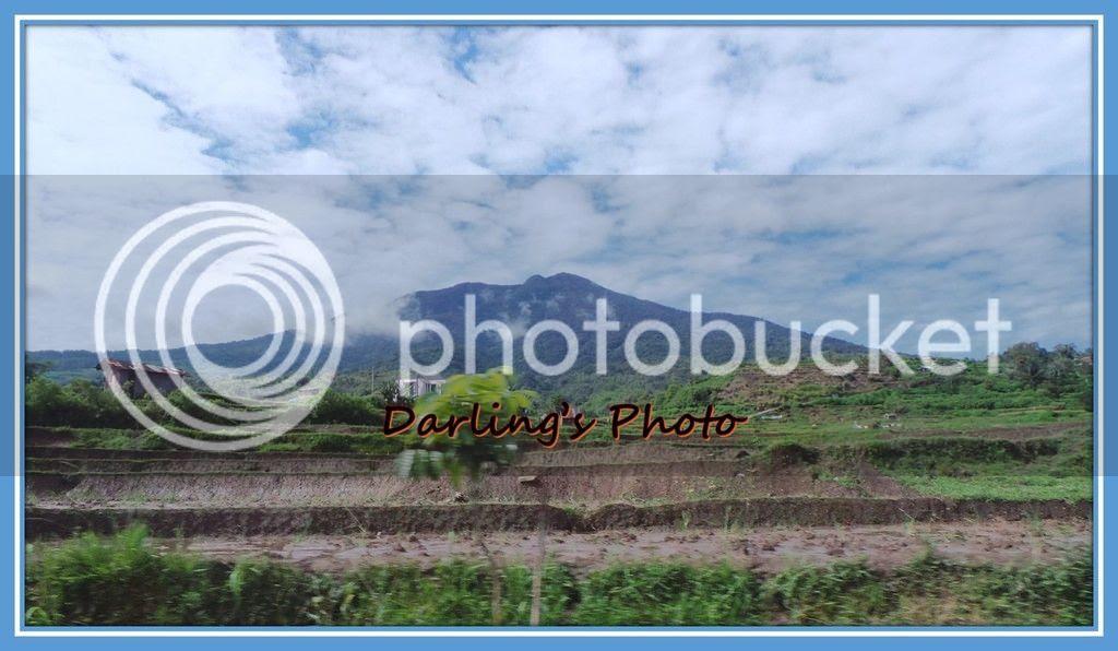 photo Picture4_zpsmm62sjtv.jpg