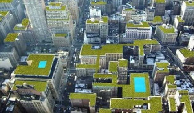 Resultado de imagen para techos verdes