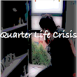 Book Blogging Beauties: Quarter Life Crisis by Diana-Ashley Krach Free to BBB Readers!