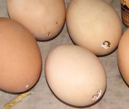 Metallic Easter Eggs 001