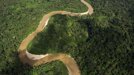 I Am Amazon: Discover your connection to the rainforest with Google Earth