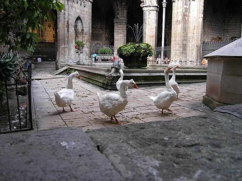 Datei:Barcelona.Kathedrale.Kreuzgang.jpg