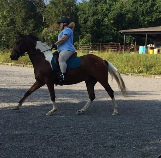 Fat to Fit to First Level: The 4th Horseman of William James | HORSE NATION