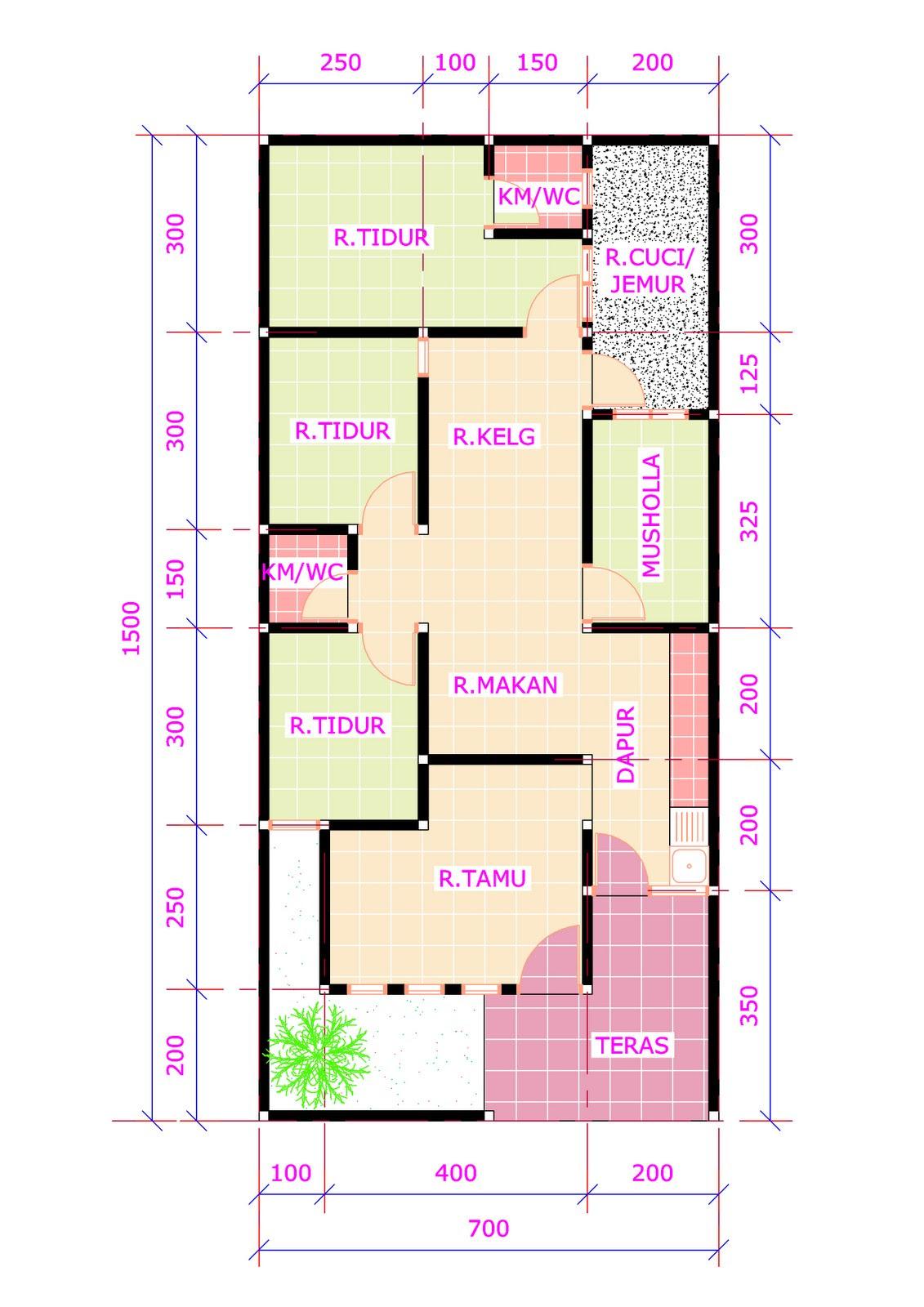 denah rumah 3 kamar ukuran 6x12 terbaru Desain Rumah