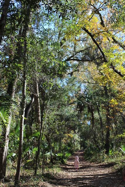 Wekiva State Park and Wekiva Island