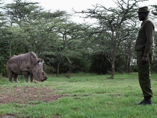 EPA EPASELECT KENYA WILDLIFE CONSERVATION HUM CONSERVATION ANIMALS KEN