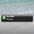 Web SMS as a Branding Tool for your Marketing Strategy » Hive SMS