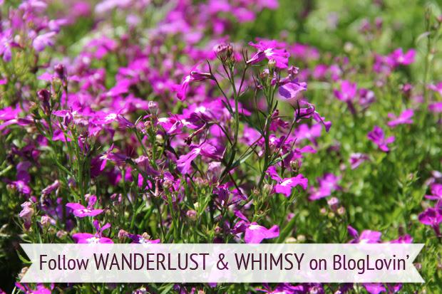 blog wanderlust whimsy megan bloglovin