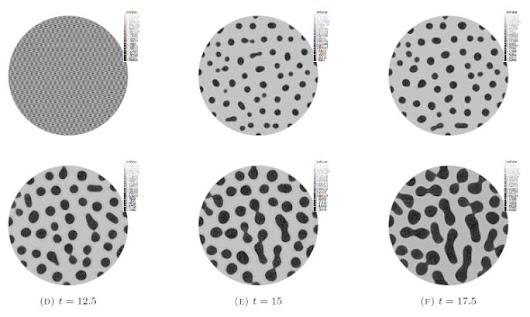 Mathematical modeling of spheroid formation in BIOMIMESYS