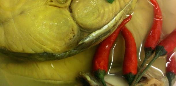 resepi ikan tongkol  nasi dagang crv tu Resepi Singgang Ikan Belanak Enak dan Mudah