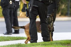 A Belgian Malinois dog, part of the Secret Service's K-9 unit used for security at the White House, greets members of the Secret Service police on the North Lawn in this file photo.