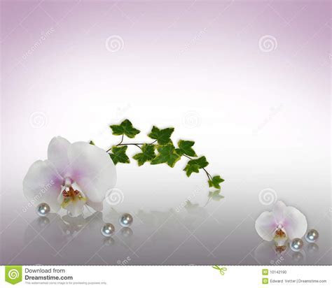 Orchids And Pearls Wedding Invitation Stock Illustration