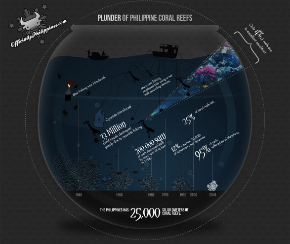 The Plunder of the Philippine Coral Reefs