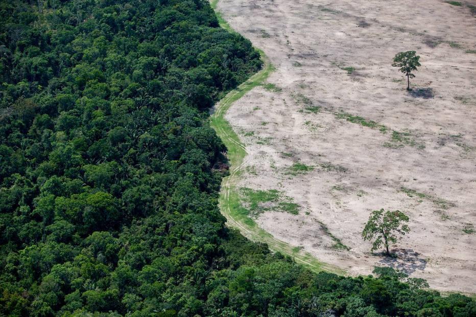 MPF move ação contra decreto que extinguiu reserva na Amazônia