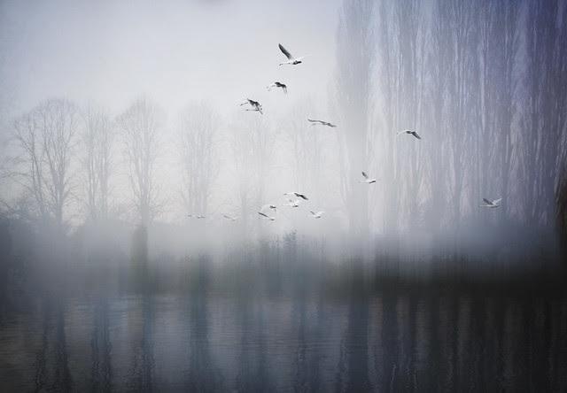 Photo layer - Thames