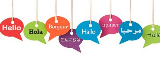 La gestion de site multilingue - rédaction web -