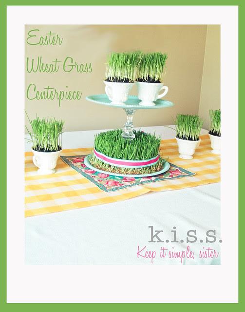 wheatgrass_tut