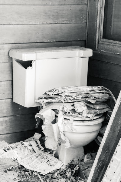 Toilet at the Abandoned Farmhouse
