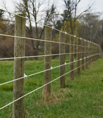 Electric Fence Electric Fence Horses Cost