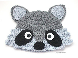 Raccoon2_small2