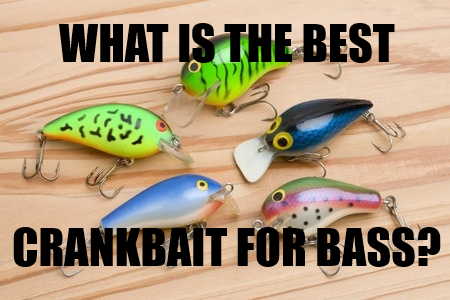 The Best Bass Crankbaits - What's In Your Tacklebox? - My Top 8 -