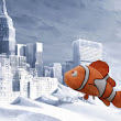 Don't Call This Storm Nemo