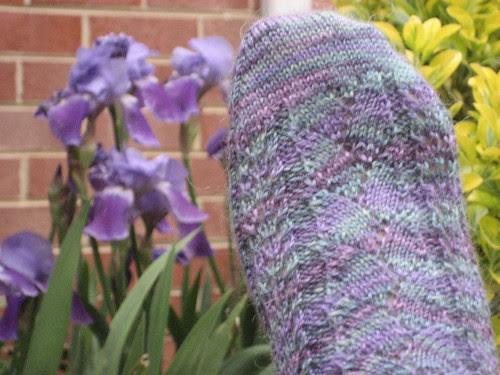 Bloomin Feet and Bloomin Iris'