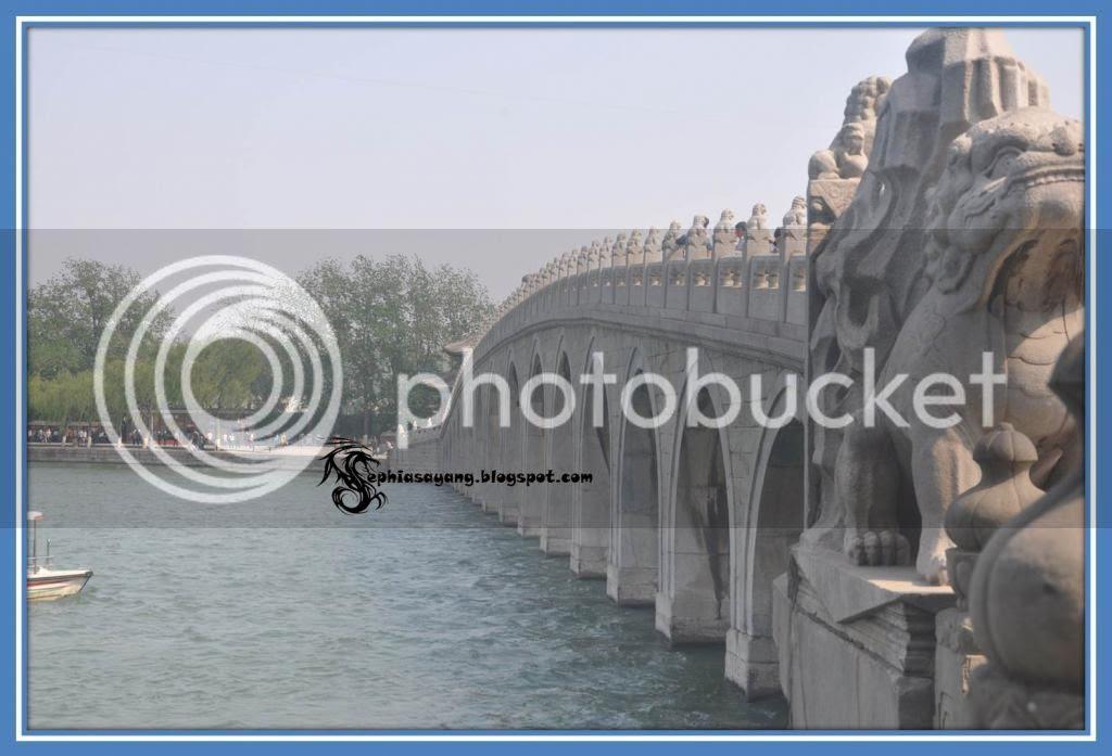 photo Picture9_zps985ba3b4.jpg