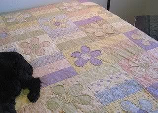 Patti's quilt again