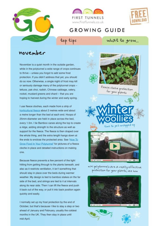 November Polytunnel Growing Guide | First Tunnels