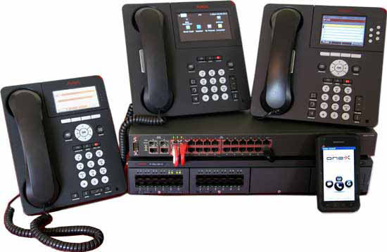 Avaya IP Office & Avaya Networking