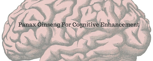 Panax Ginseng For Cognitive Enhancement - Nootropics Zone