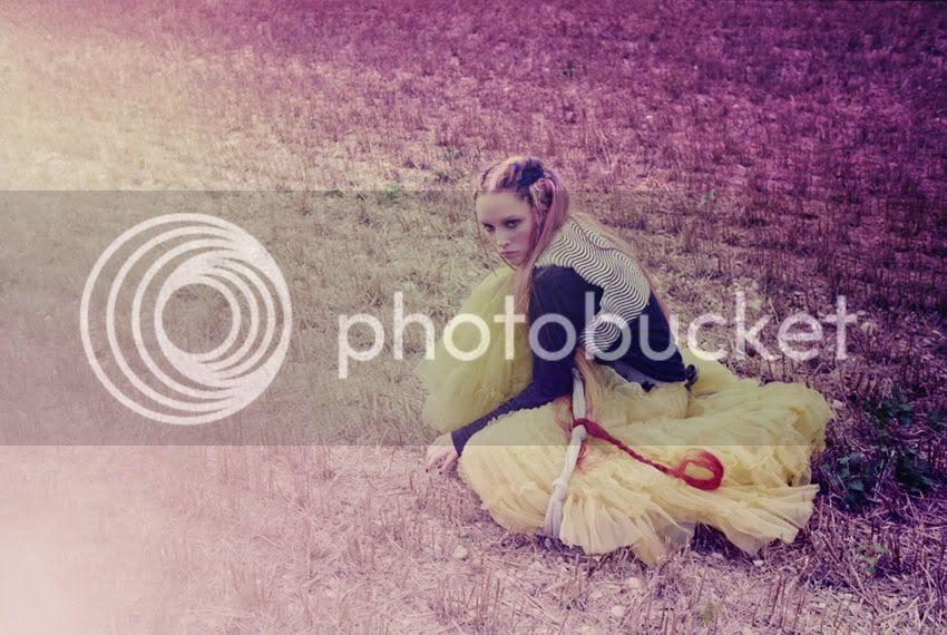 field,yellow,layering,sheer