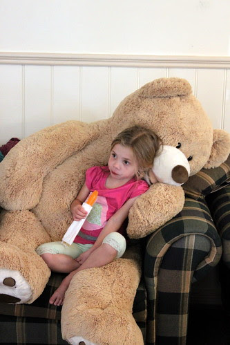 Watching TV on Bear's knee