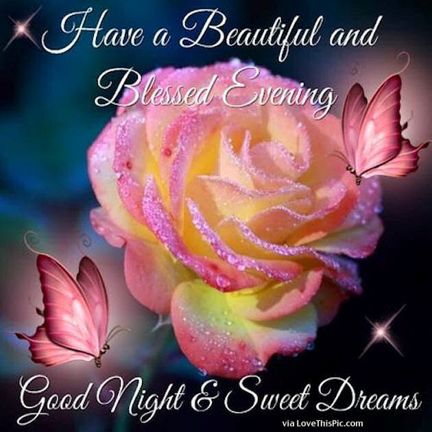 Have A Beautiful And Blessed Evening Pictures Photos And Images