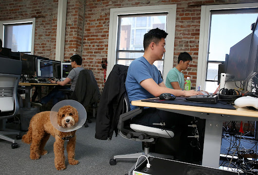 Bay Area slips in startup rankings
